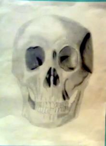 skull-drawing